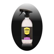 DFx Decontaminant Spray Automotive